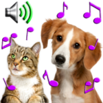 En Güzel Hayvan Zil Sesleri indir