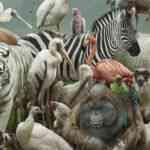 En Popüler Hayvan zil sesleri indir